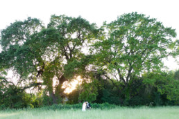 Lifestyle wedding photography napa valley wine country